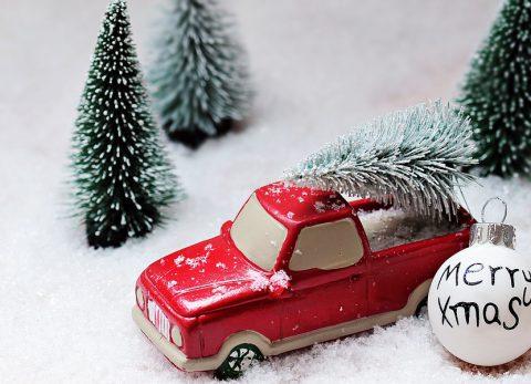 christmas-tree-1856410_960_720